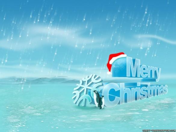 happy cristmas (10)