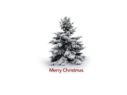 happy cristmas (8)